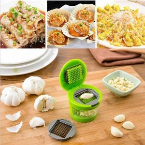 ABS Stainless Steel Mini Garlic Grater For Kitchen