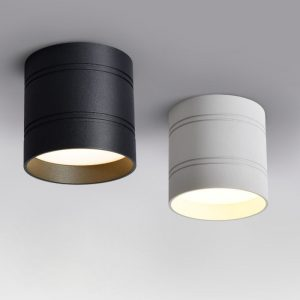 Ceiling Light Fashionable And Functional LED Light